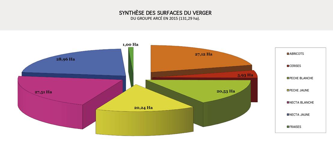 Synthèse-des-Surfaces-2016