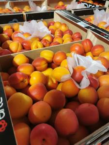 apricots-1