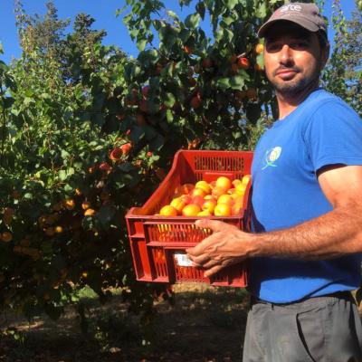 Ludovic producteur et patron de l'exploitation agricole.